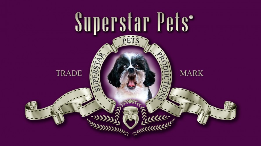 Superstar Pets internships in East of England, London